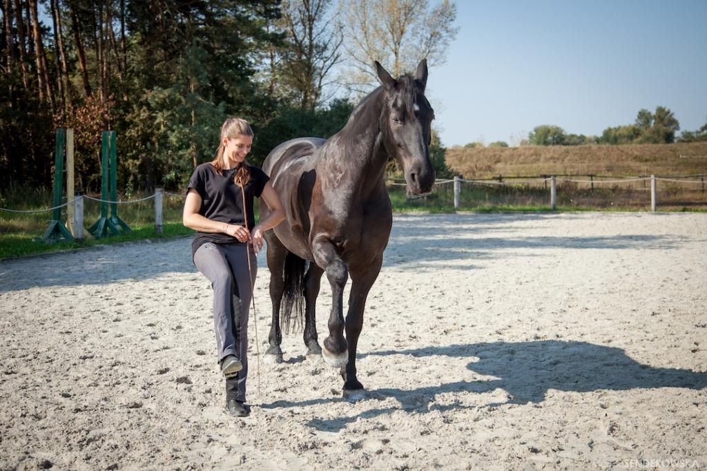 respect in horsemanship